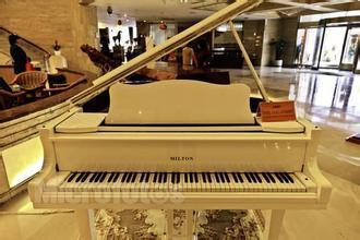 想让宝宝学习钢琴需要具备哪些条件
