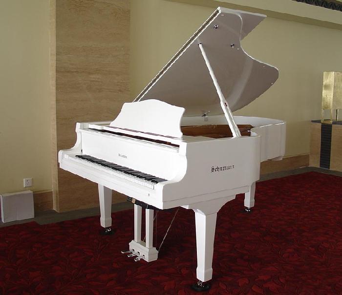 在钢琴练习中对指法安排有什么原则